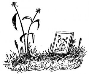 """Это не просто рисунок, это область психотерапии… Рисунок Аллы Бурно из книги Марка Бурно """"О характерах людей"""""""
